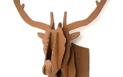 Amazing ways to re-use a Cardboard Box (before you fully recycle it!)